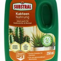 Substral cactus food 250ml fertilizzante liquido