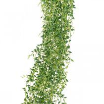 Pianta succulenta appesa artificiale verde 96 cm