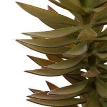 Ramo succulento marrone chiaro verde 48cm