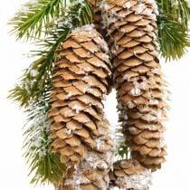 Verde abete con pigne, decoro invernale, ramo di pino da appendere, decoro cono, innevato L33cm