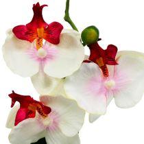 Decorazione da tavola orchidea in vaso color crema H29cm
