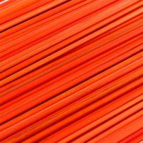 Arancia Tonkin 70cm 150p.