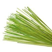 Bastoncini decorativi Tonkin 70cm verde chiaro 150p
