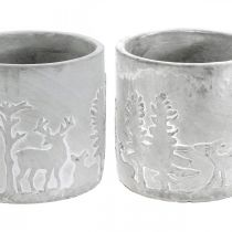 Portavasi con motivo foresta, decorazione dell'Avvento, fioriera per Natale, decorazione in cemento Ø10,5 cm H11 cm 4 pezzi
