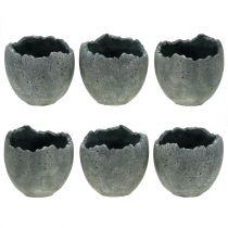 Portavaso guscio d'uovo Ø12cm H11,5cm 6 pezzi