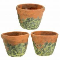 Vaso per fioriera vintage argilla naturale Ø11,5 cm H9 cm 3 pezzi