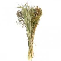 Fiori secchi Set fai da te per asciugare bouquet natura 60cm