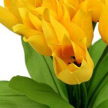 Cespuglio di tulipano giallo H30cm