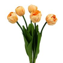 Bouquet di tulipani Albicocca 43 cm