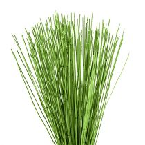 Vlei Reed 400g verde chiaro