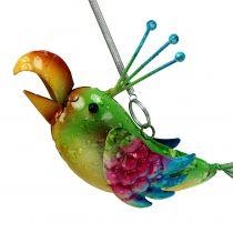 Uccello per appendere verde, rosa, blu 19,5 cm