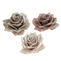 Mix di rose rose di cera Ø10cm 6 pezzi