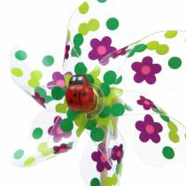Mulino a vento Mini multicolore con coccinella Ø9cm 12 pezzi