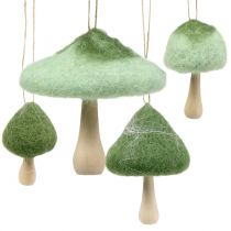 Legno di fungo Decorazione da appendere / feltro verde Ø5cm-Ø10cm H9cm 8 pezzi