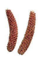 Abete rosso grattugiato naturale 2kg