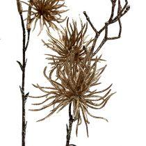 Oro nocciola strega con glitter 50cm