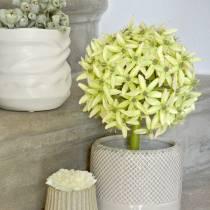 Cipolla ornamentale Allium, fiore di seta, palla artificiale verde porro Ø20cm L72cm