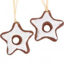 Decorazioni per l'albero di Natale stelle di cannella decorazione stella plastica 5cm 24 pezzi