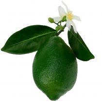Limoni con fiore 9,5cm verde 4 pezzi