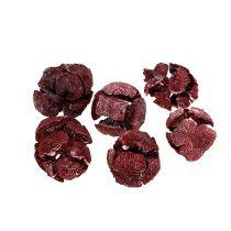 Coni di cipresso 3cm rosso scuro 500g