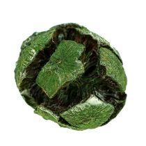 Coni di cipresso 3 cm verde 500 g
