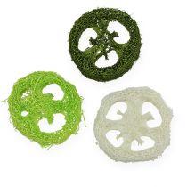 Fette di luffa ordinate. Verde, bianco 5-7,5 cm 24 pezzi