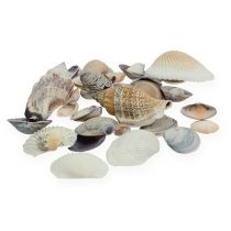 Shell mix naturale 400g