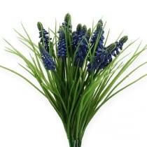 Giacinti d'uva 28 cm - 30 cm blu 5 pezzi