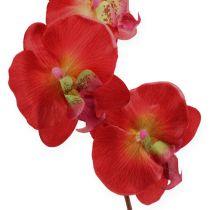 Orchidea decorativa rossa 68 cm