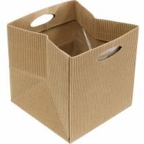 Sacco di carta 12 cm marrone, crema, beige sacchetto regalo per fioriera 12 pezzi