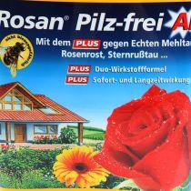 Etisso Rosan AF senza funghi 750 ml