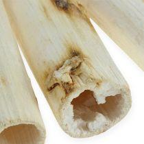 Gambo di girasole 20 cm bianco 12 pezzi