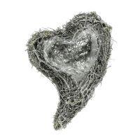 Pianta cuore vite 15 cm x 23 cm x 5 cm bianco 4 pezzi