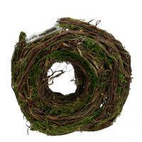 Ghirlanda di piante natura 28 cm x 30 cm