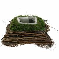 Cuscini in rattan, muschio 20 cm x 20 cm H8 cm