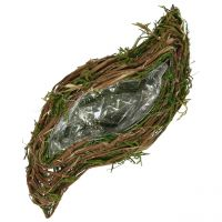 Piantagione di viti e muschio 45 cm x 18 cm