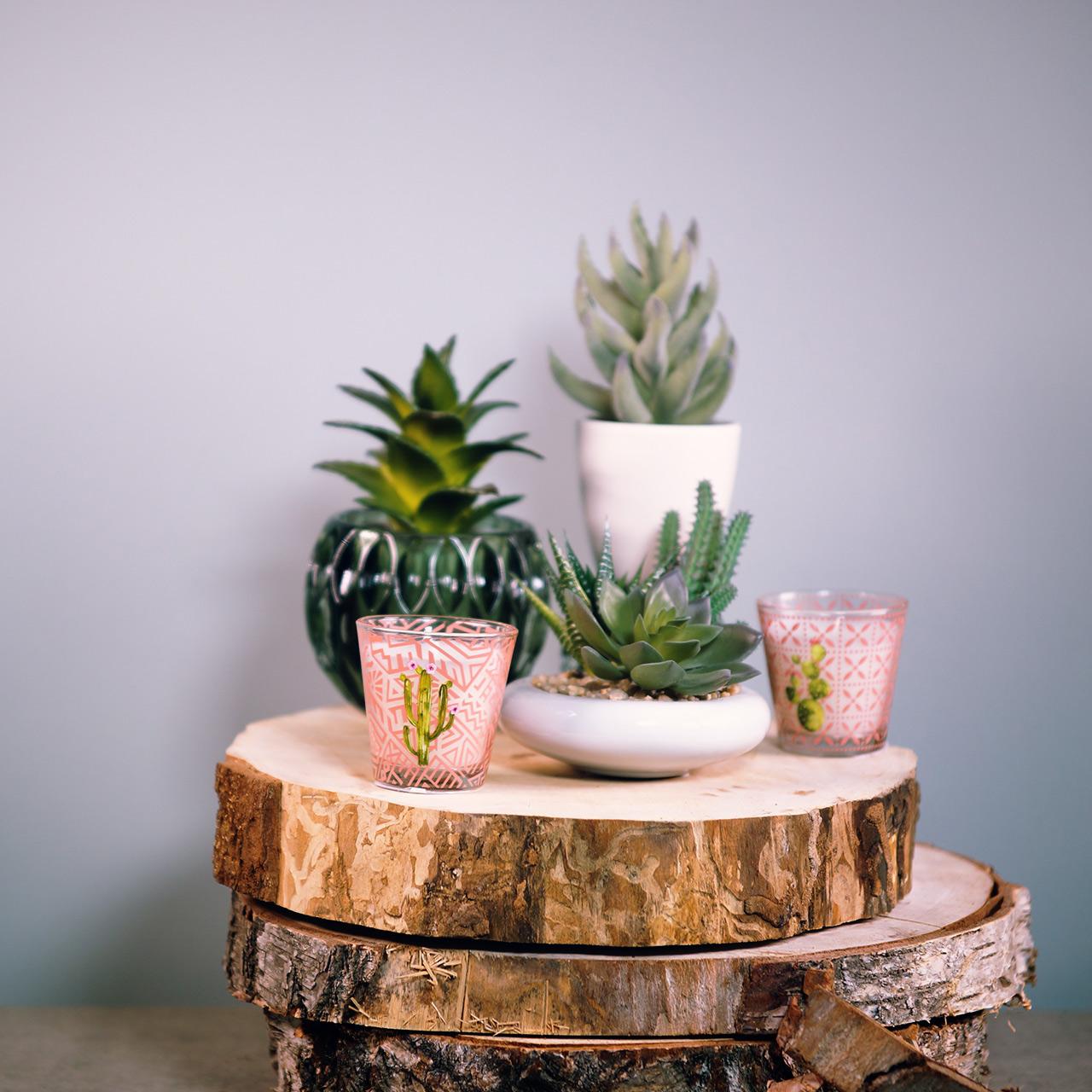 Candela di cera in vetro cactus Ø6,5cm 2 pezzi