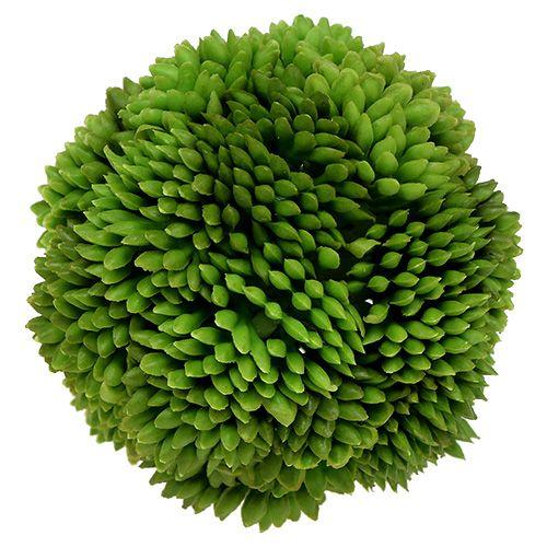 Palla Allium 5cm Verde 4 pezzi