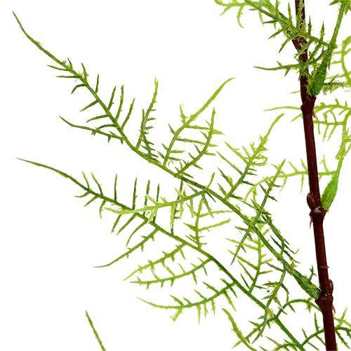 Ramo di asparagi 75 cm verde 3 pezzi