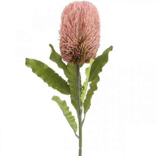 Fiore artificiale Banksia rosa decorazione autunnale fiori commemorativi 64 cm
