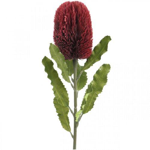 Fiore artificiale Banksia Rosso Borgogna Esotici artificiali 64 cm