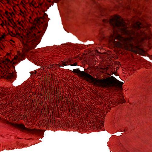 Spugna per alberi rossa 1kg