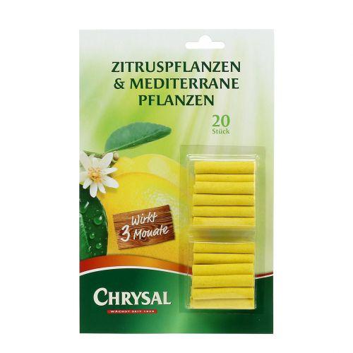 Il fertilizzante Chrysal si attacca agli agrumi 20St