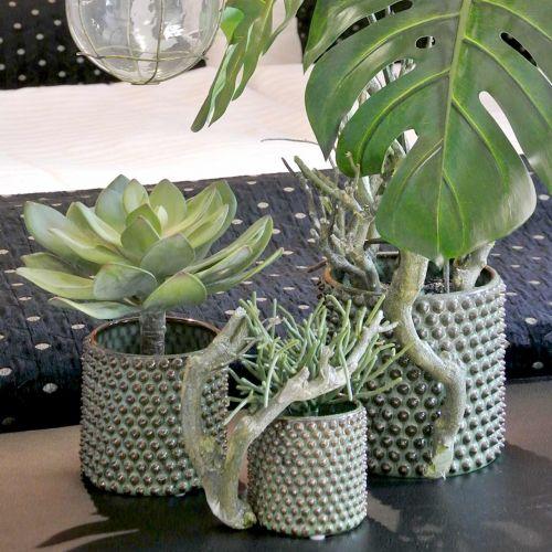 Pianta succulenta decorativa verde artificiale Ø30cm H27cm