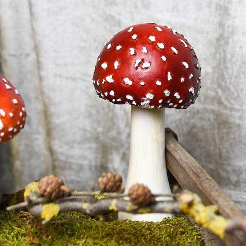 Agarico decorativo rosso, bianco decorazione autunnale fungo Ø10.5cm H21cm