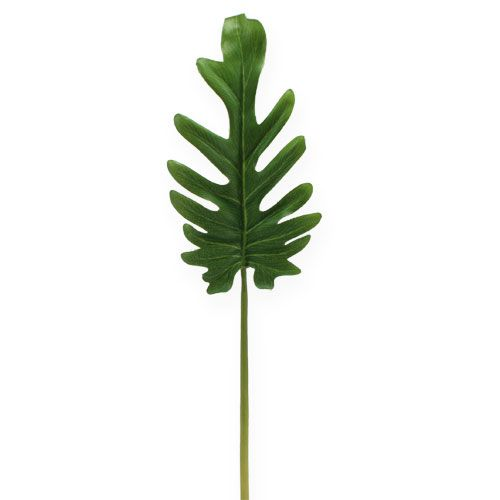 Lenzuola decorative Philodendron verde B11cm L34cm 6 pezzi
