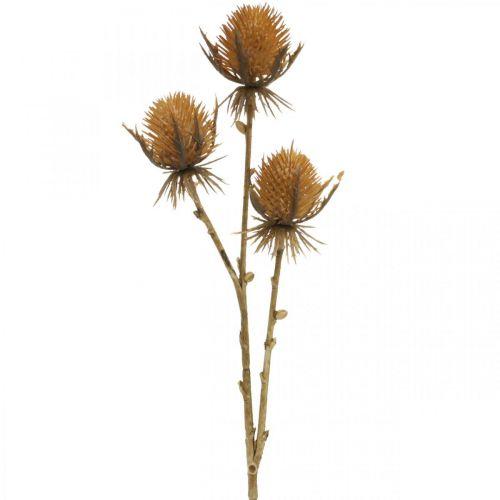 Ramo di cardo marrone pianta artificiale decorazione autunnale 38cm