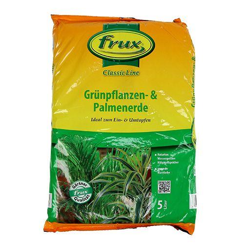 Pianta verde FRUX e terreno di palma 5l