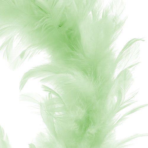 Ghirlanda di piume Verde chiaro Ø20cm 3pezzi
