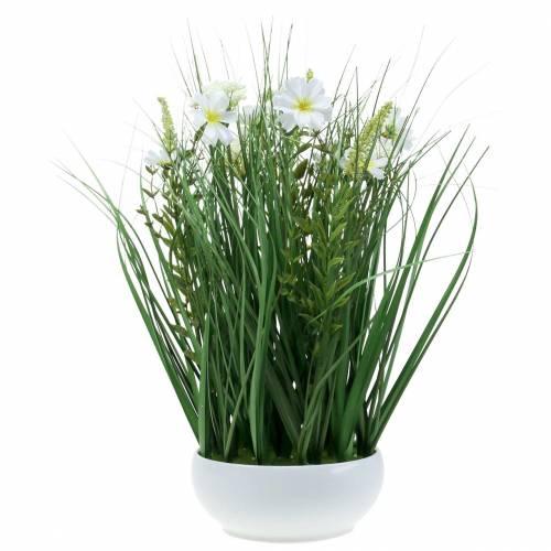 Erba decorativa con fiori di Cosmea in ciotola H45cm